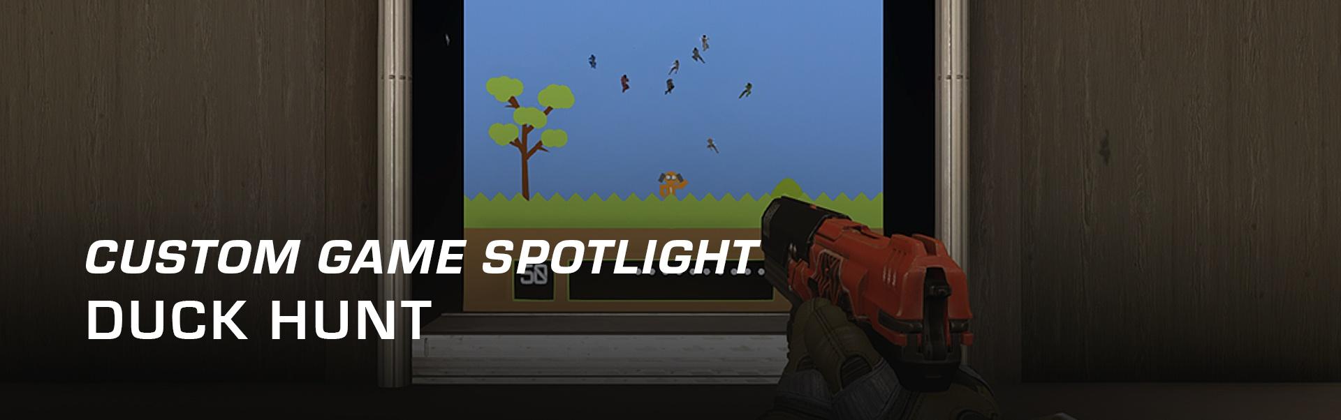 custom_game_spotlight_-_duck_hunt.jpg
